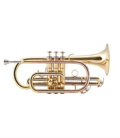 Buy conn selmer Prelude Student Bb Cornet by Bach Melody House