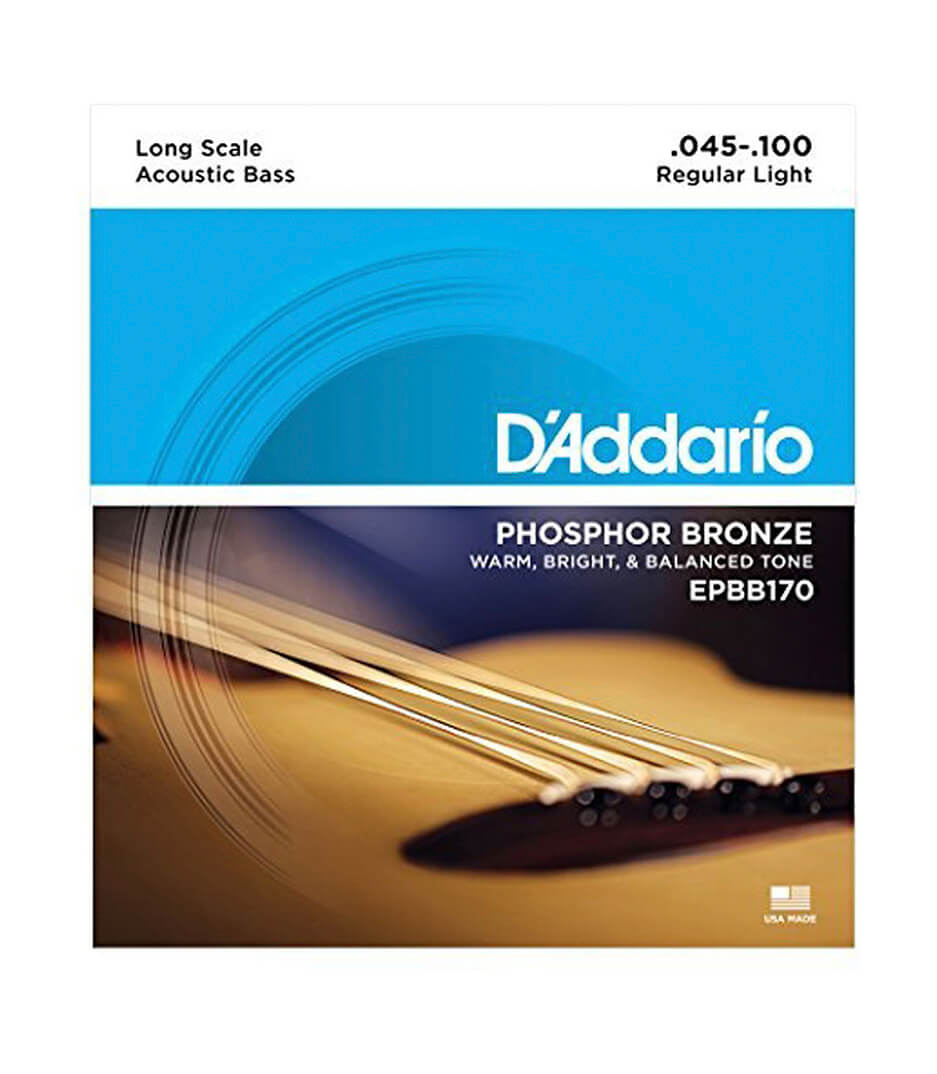 D'Addario - EPBB170