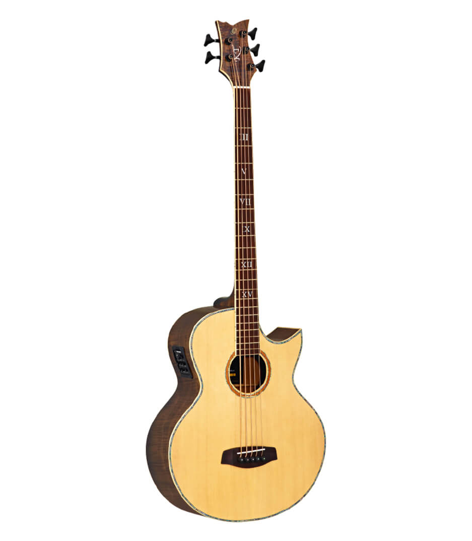buy ortega ktsm 5 5 string signature series acoustic electric
