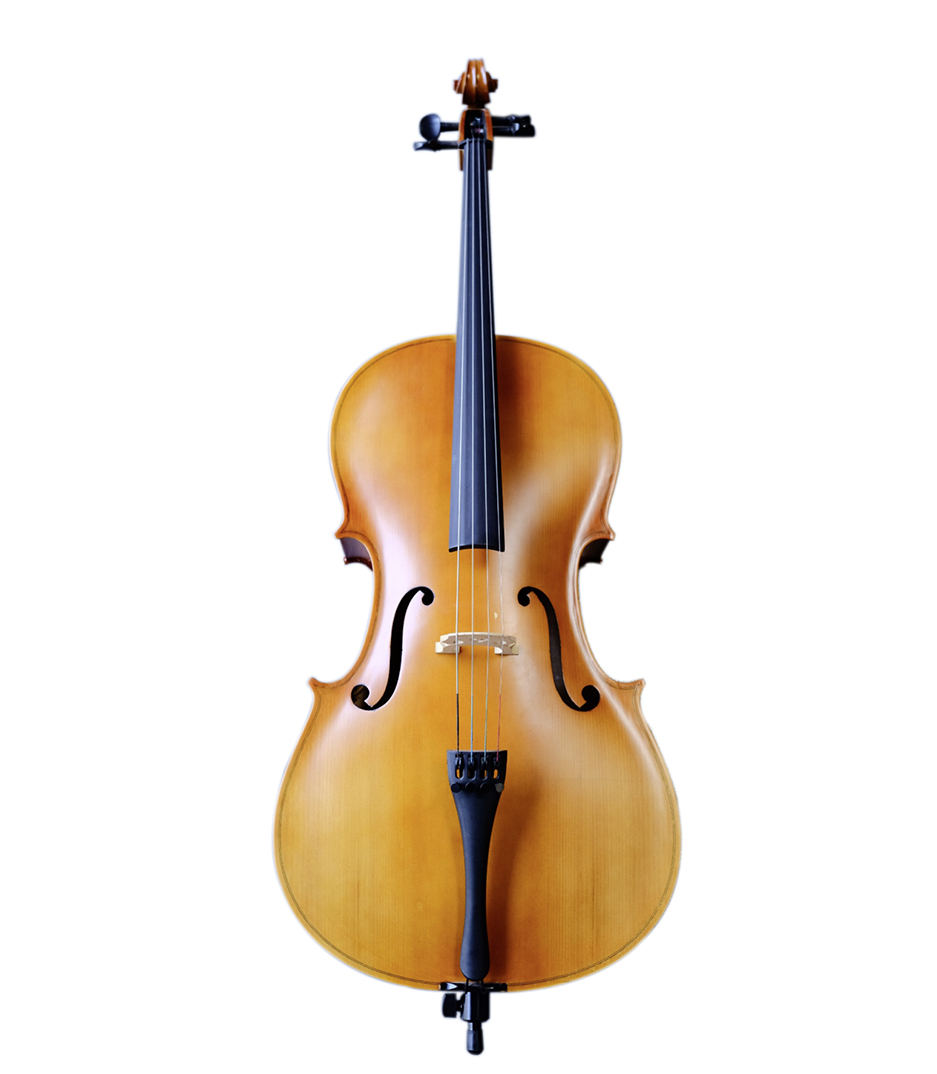 buy vandeshih vn100t 3 4 cello with carrying bag