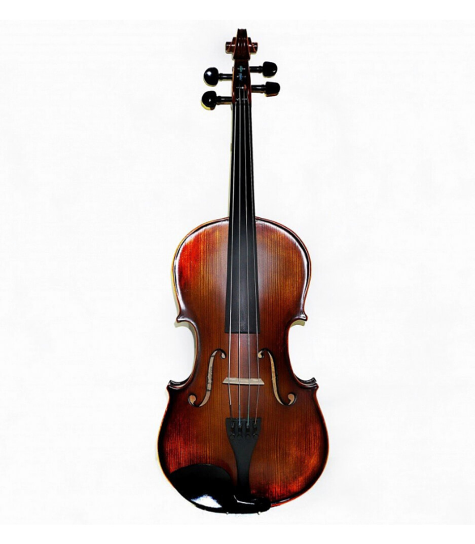 buy vandeshih vn101 15 15  size viola with case
