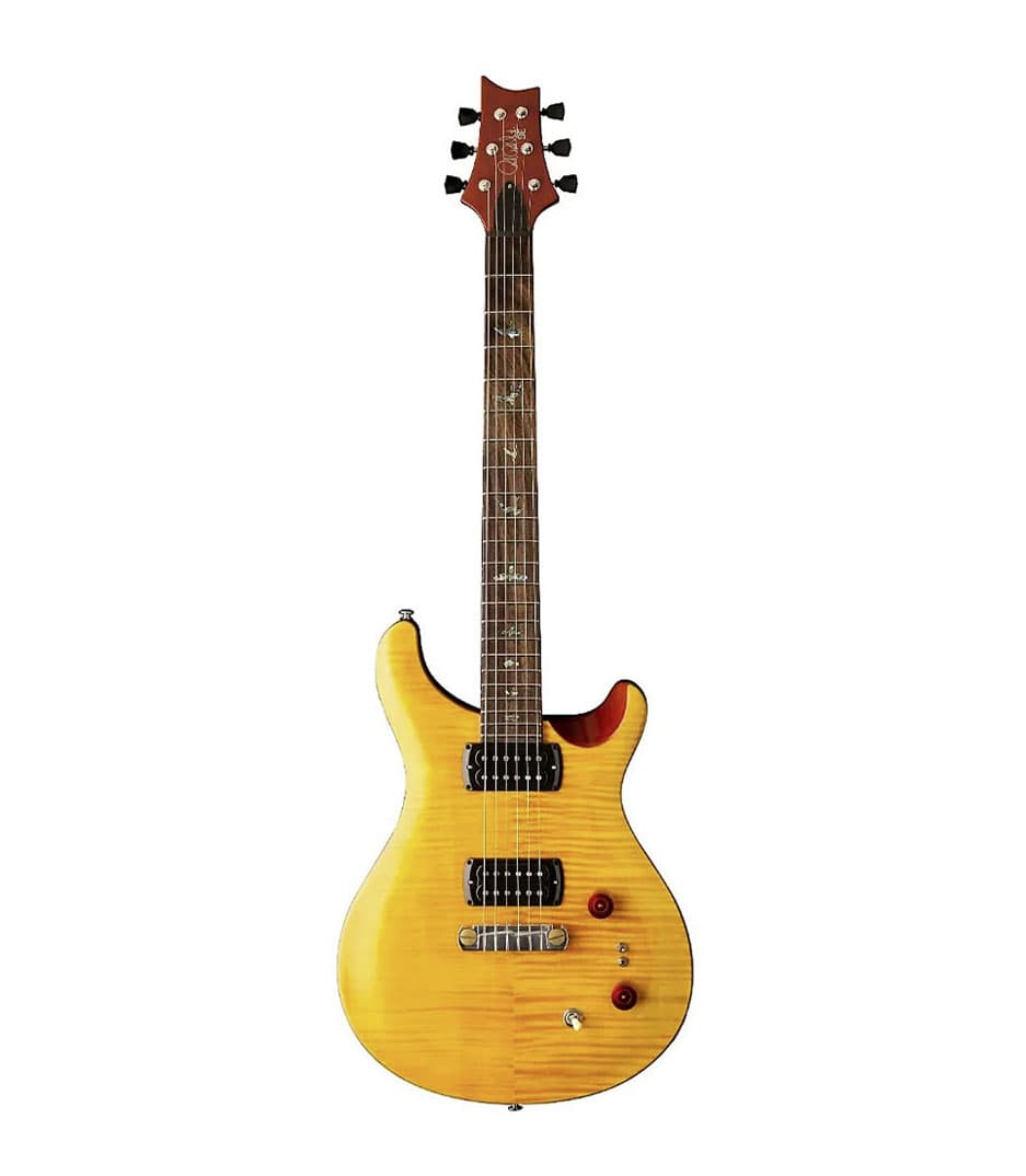 PRS - 103495 AB - Melody House Musical Instruments