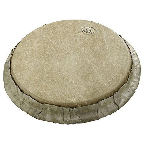 Buy remo Bongo Drumhead Tucked 8 5 SKYNDEEP Calfskin Melody House