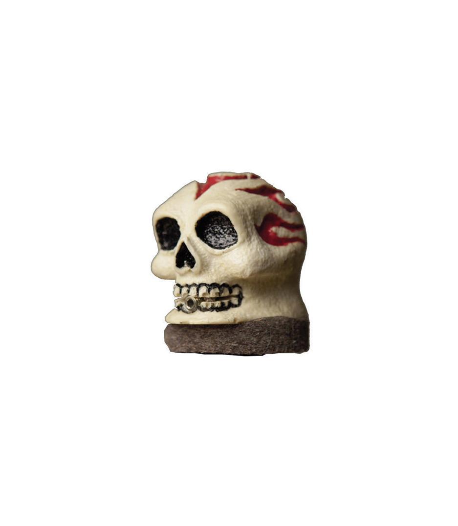 Buy VATER - VSN Skull Slick Nut